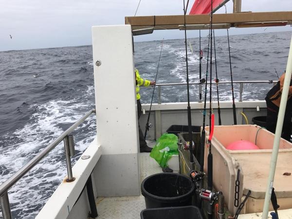 Titran 2017 - Sjøfiske del 2